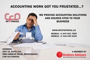 provide development services, virtual accounting & CFO services.